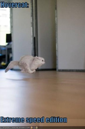 Hovercat:  Extreme speed edition