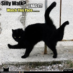 Silly Walk? .... I has one! . . . . . . . .