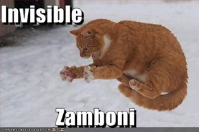 Invisible Zamboni