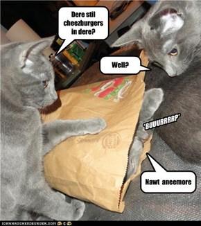 Dere stil cheezburgers in dere?