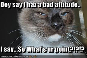 Dey say I haz a bad attitude..  I say...So What's ur point?!?!?
