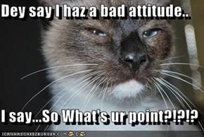 Dey say I haz a bad attitude..  I say...So What's ur point?!?!?