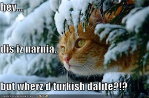 hey... dis iz narnia, but wherz d turkish dalite?!?