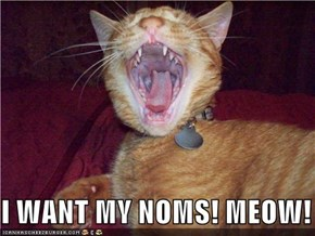 I WANT MY NOMS! MEOW!