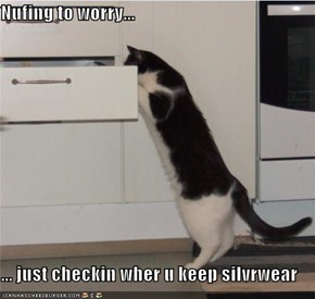 Nufing to worry...  ... just checkin wher u keep silvrwear