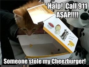Halp!  Call 911 ASAP!!!!
