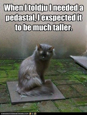 When I toldju I needed a pedastal, I exspected it to be much taller.