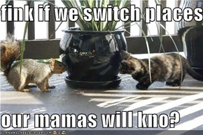 fink if we switch places  our mamas will kno?