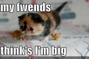 my fwends  think's I'm big