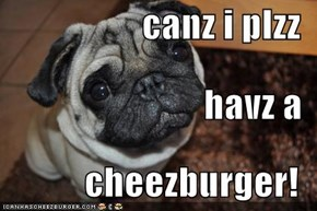 canz i plzz  havz a  cheezburger!