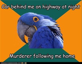 Paranoid Parrot: Nighttime driving