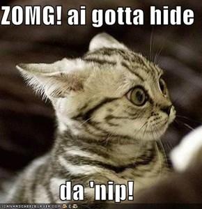 ZOMG! ai gotta hide  da 'nip!