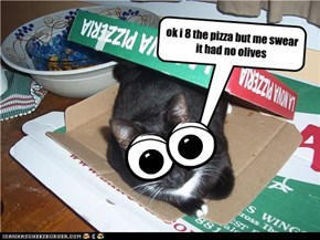 never trust a cat with pizza
