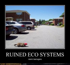 RUINED ECO SYSTEMS