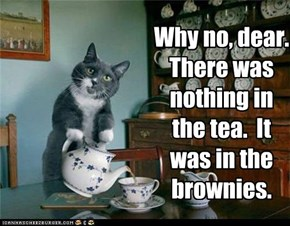 Why no, dear.  There was nothing in the tea.  It was in the brownies.