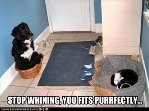 STOP WHINING, YOU FITS PURRFECTLY...