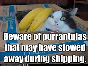 Beware of purrantulas that may have stowed away during shipping.