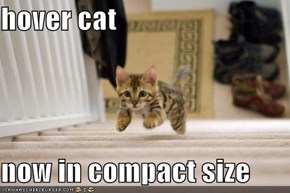 hover cat  now in compact size