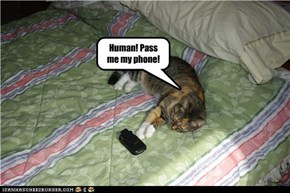 Human! Pass me my phone!