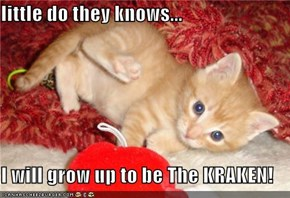 little do they knows...  I will grow up to be The KRAKEN!