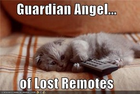 Guardian Angel...  of Lost Remotes