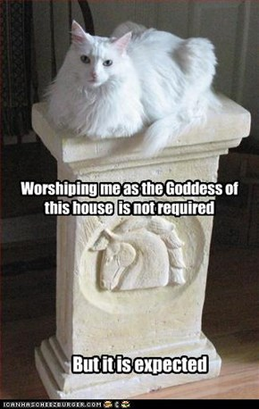 Worshiping me as the Goddess of this house  is not required