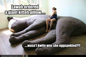 Lawah ordered a giant kitteh pillow.....
