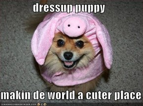 dressup puppy  makin de world a cuter place