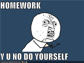 HOMEWORK  Y U NO DO YOURSELF