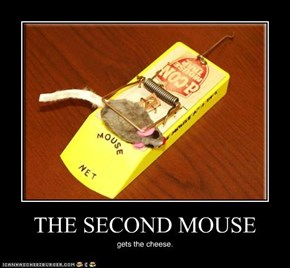 THE SECOND MOUSE