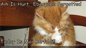 Aih Is Hurt, Eberyone Fergotted  Taday Is Mai Burfdai!!