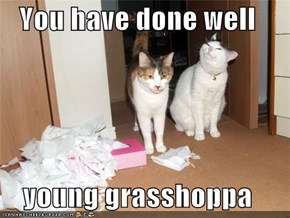 You have done well  young grasshoppa