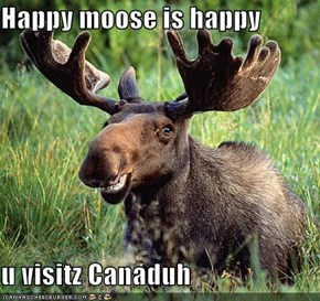 Happy moose is happy  u visitz Canaduh