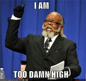 I AM  TOO DAMN HIGH