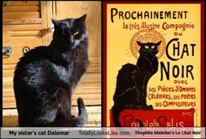 My sister's cat Dalamar Totally Looks Like Thophile Steinlen's Le Chat Noir