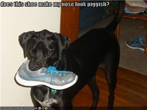 does this shoe make my nose look piggish?