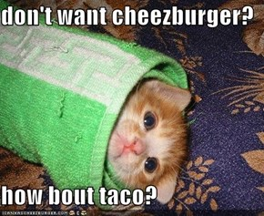 don't want cheezburger?  how bout taco?