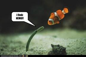 i findz NEMO!!