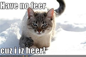 Have no feer  cuz i iz heer!