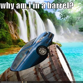 why am I in a barrel?