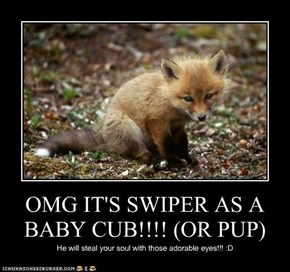 OMG IT'S SWIPER AS A BABY CUB!!!! (OR PUP)