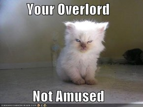 Your Overlord  Not Amused