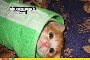 why you wrap me in towel