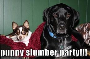 puppy slumber party!!!