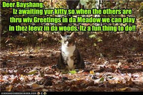 Iz awaiting yur kitty so when the others are thru wiv Greetings in da Meadow we can play in thez leevz in da woods. Itz a fun thing to do!!