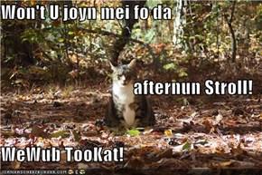 Won't U joyn mei fo da  afternun Stroll! WeWub TooKat!