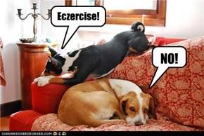 Eczercise!