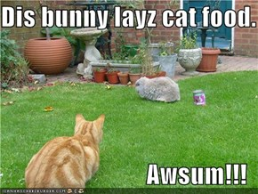 Dis bunny layz cat food.  Awsum!!!