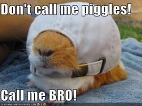 Don't call me piggles!  Call me BRO!