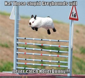 Ha! Those stupid Greyhounds will   never catch HoverBunny!!!